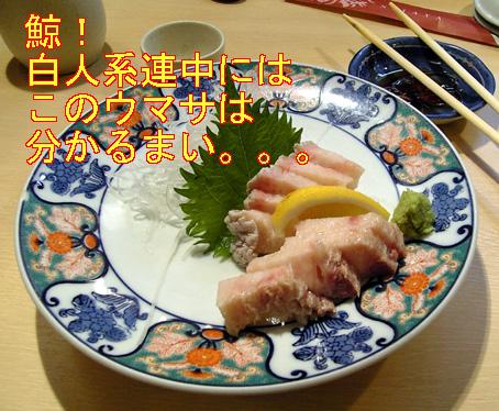 04kujira