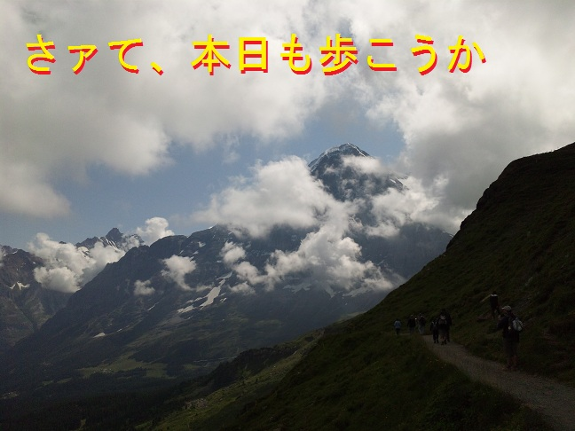 Swiss2013081482