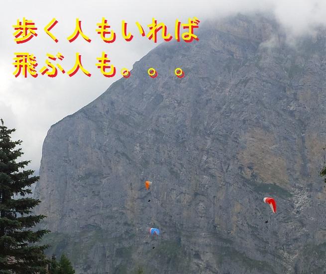 Swiss2013081496